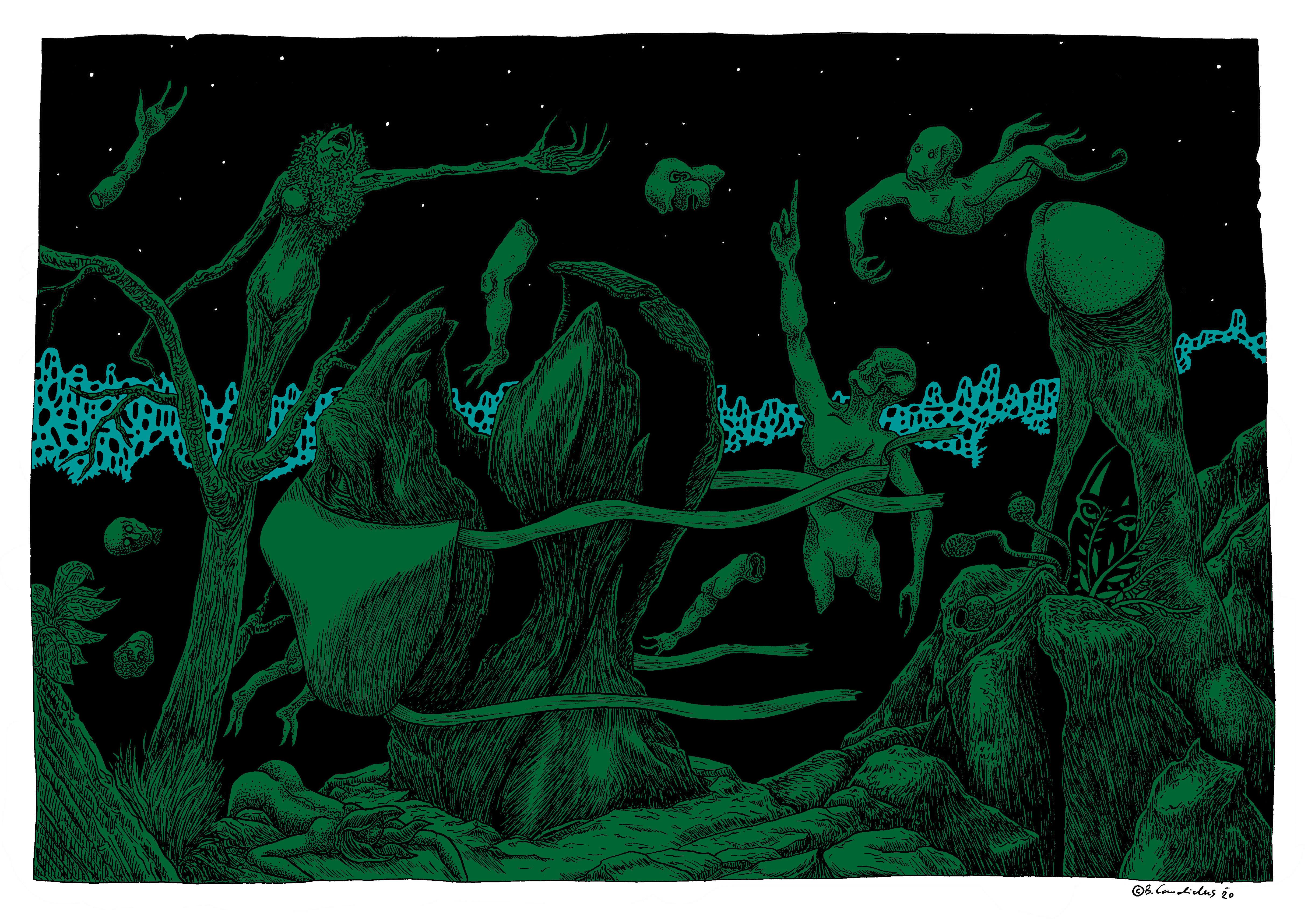 Bjoern Candidus - DER GARTEN IN AUFRUHR (Colorierte Version)