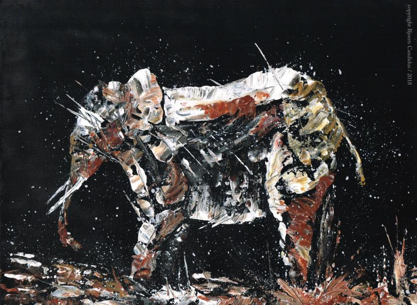Bjoern Candidus - EXTRAMUNDAN (12)